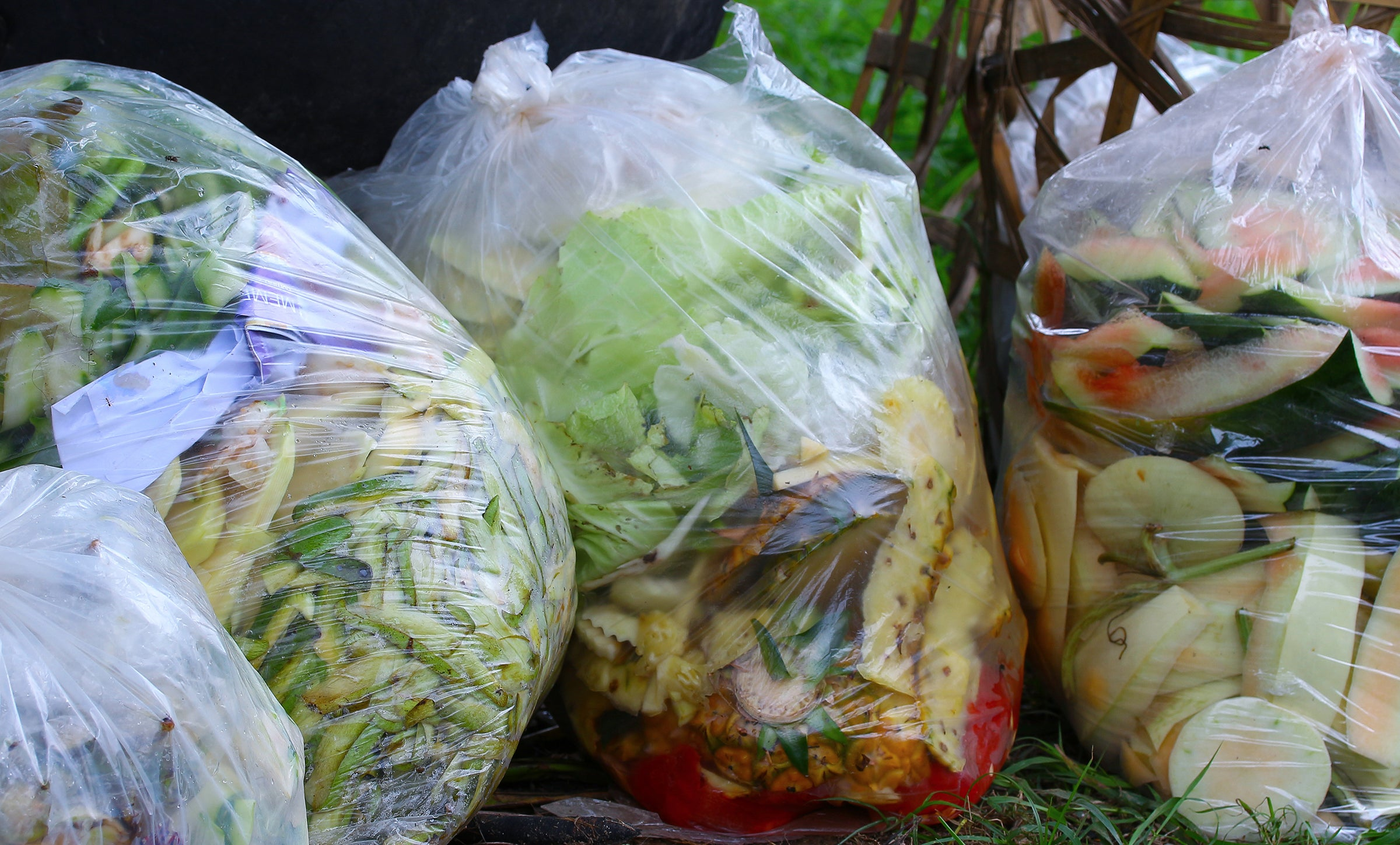 How to Outsmart Food Waste