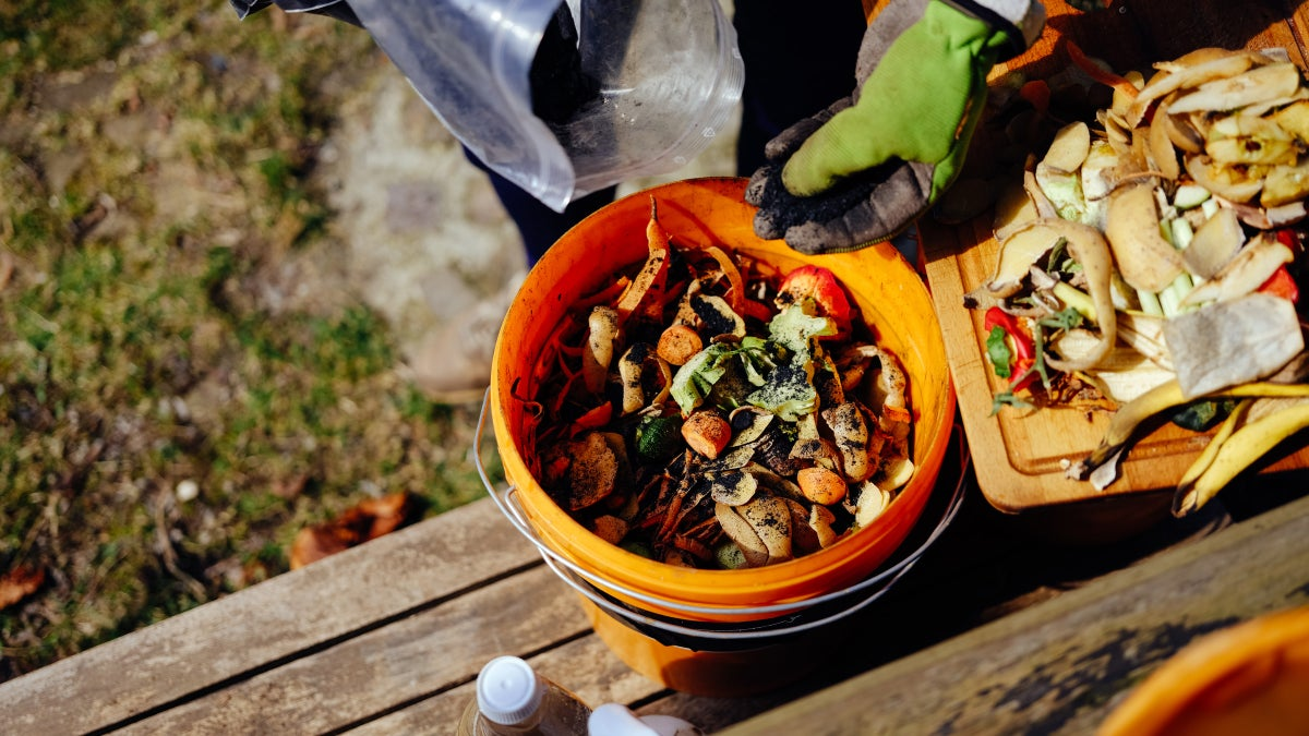 Why Fermented Foods Are So Great for Your Garden