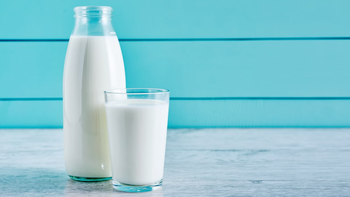 Your Guide to Lab Milk