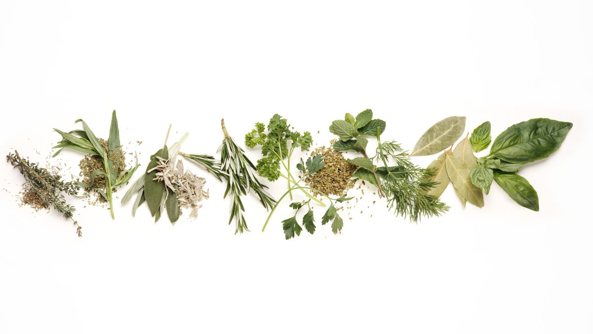Confused About When to Use Fresh Herbs Versus Dried?